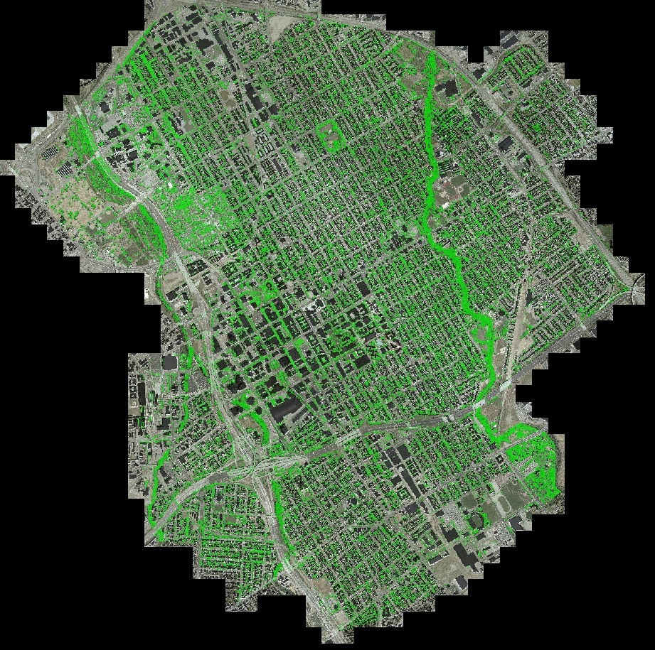 Digital map of the Garden to Table project area in San Jose overlaid with the Fruit Tree Canopy layer.