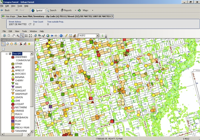 Cengea Urban Forest displays Garden to Table fruit tree locations on a parcel base map layer.