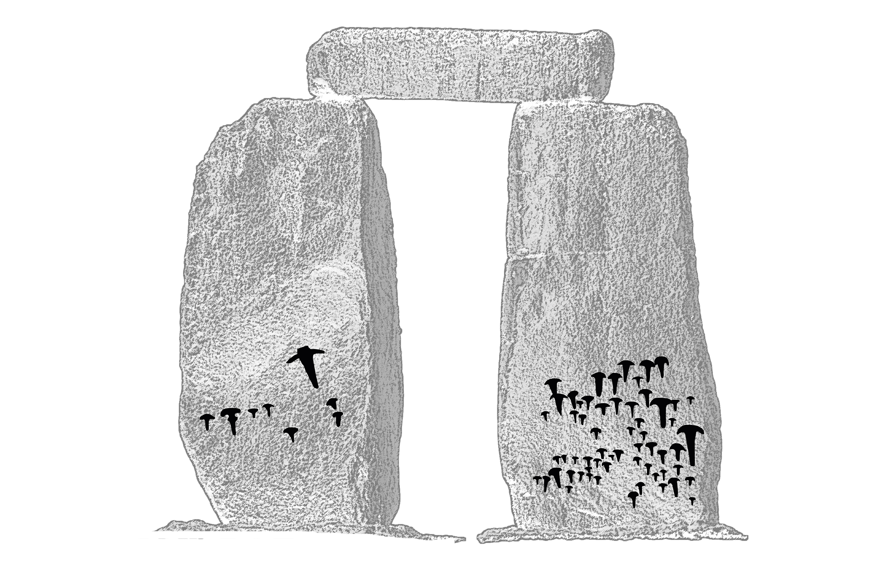 Detailed lidar scan and analysis of stonehenge reveals