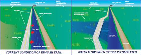 tamiami_bridge_compare_small