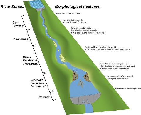 The diagram correlates the river zones created by large dams (shown on left) to the morphological features (described on right) that each zone influences.