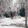storm_damage_poles
