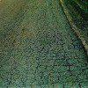 hot_pavement