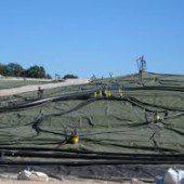 landfill_biomass
