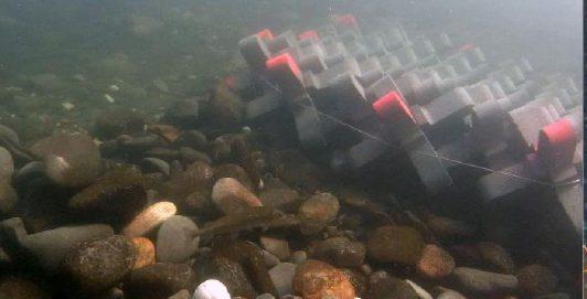 D2AJacks mat underwater pier5
