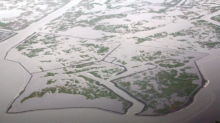 This overview of the Barataria Basin Landbridge Dredging project shows the deteriorated condition of the marshes in the project area.