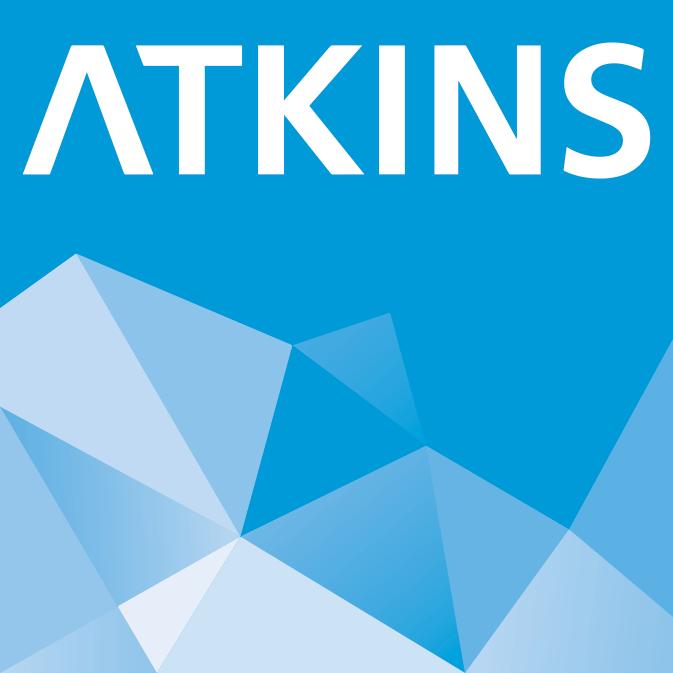 Atkins s